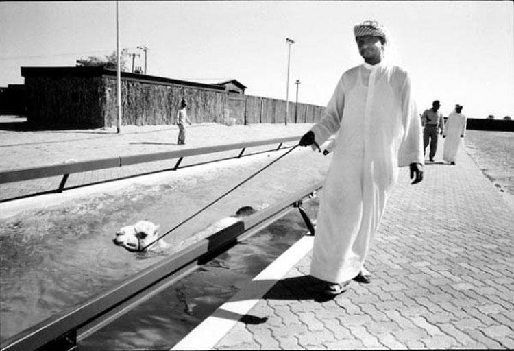 Mes Arabies